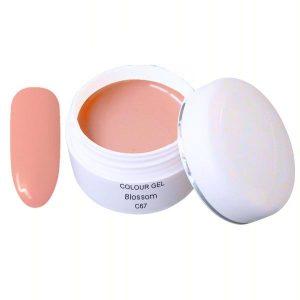 Colour gel blossom is een led/uv gel in een trendy kleur.